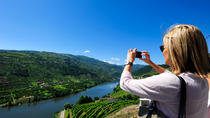 Discover Douro Valley, Porto, Day Trips