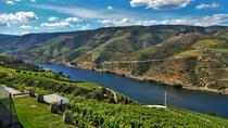 Douro Valley Guided Tour from Porto, Porto
