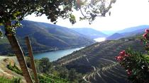 Private Douro Valley Guided Tour from Porto
