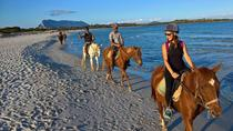 Cagliari: 5-Hour Shore Excursion Horseback Riding Tour, カリャリ
