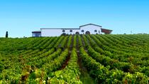 Cagliari: Full Day Wine Experience Private Tour with Lunch, Cagliari, Private Sightseeing Tours
