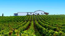 Cagliari: Wine Experience, Cagliari, Day Trips