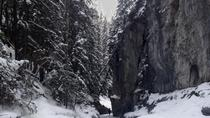 Canadese Rockies Canyon-wandeling in de winter, Banff, Ski & Snow