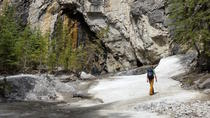 Half-Day Small Group Canadian Rockies Hike from Canmore, Banff, Day Trips