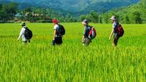 Overnight Mai Chau Pu Luong Trekking Tour, Hanoi, Multi-day Tours