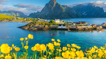 Summer Photography Tour From Svolvaer, Lofoten, Photography Tours