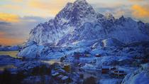 Winter Full-Day Guided Tour of the Lofoten Islands, Lofoten, Full-day Tours