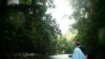 Taman Negara Rainforest Day Tour, Kuala Lumpur