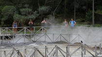 Shore Excursion - Furnas volcano and hot springs, Ponta Delgada, Attraction Tickets