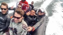 Mornington Peninsula Certified Freediving Charter Boat Tour, Mornington Peninsula, Snorkeling