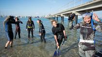 Mornington Peninsula Free-Diving Beginner Course, Mornington Peninsula, Snorkeling