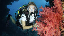 5-Day Dive Pack for Certified Divers in Marsa Alam, Marsa Alam