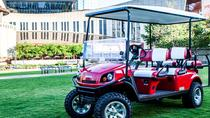 Downtown Nashville Transport by Golf Cart, Nashville, Private Transfers