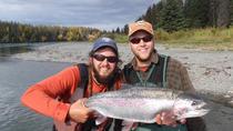 Middle Kenai River Full-Day Fishing Trip, Seward, null