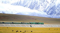 Small-Group 6-Night Lhasa to Everest Tour: Train from Xining, Xining, Multi-day Tours