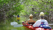 2 Hour Kayak Eco Tour, Key West