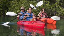 4 Hour Wildlife Refuge Kayak and Backcountry Snorkel Tour, Key West