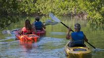 Half Day Kayak Rental, Key West, Kayaking & Canoeing