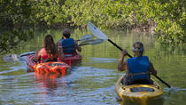 Key West Half Day Kayak Rental, Key West, Kayaking & Canoeing