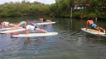 Key West PaddleFit Class, Key West, Stand Up Paddleboarding