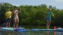 Key West Stand Up Paddleboard Lesson with Guide, Key West, Stand Up Paddleboarding