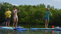 Key West Stand Up Paddleboard Rental and Lesson, Key West, Stand Up Paddleboarding