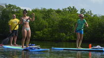 Key West Stand Up Paddleboard Vermietung mit optionalen Lektion, Key West, Stand Up Paddleboarding