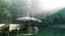 3 giorni Sun Moon Lake e Alishan National Scenic Area Tour, Taipei, Multi-day Tours