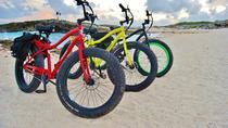 Cozumel East Side Scenic Electric Bike Tour Including Lunch, Cozumel, Bike & Mountain Bike Tours