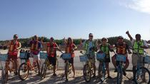 Punta Sur Eco Beach Park Electric Bike Tour in Cozumel, Cozumel, Bike & Mountain Bike Tours