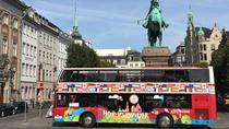 Escursione a terra: pass giornaliero per Red Buses Hop-On Hop-Off, Copenaghen, Tour hop-on/hop-off