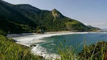 Private Tour: Rio de Janeiro Beaches and Forest Landscapes, Rio de Janeiro, Full-day Tours