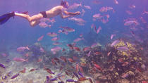 Full-Day Catalina Island Snorkeling Tour from Bavaro, Punta Cana, Parasailing