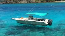 Private Powerboat Tour from St. Thomas and St. John, St Thomas, Day Cruises