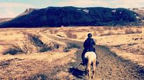 Private Horse Riding Tour of Lake Hafravatn from Reykjavik, Reykjavik, Half-day Tours