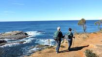 Great Walks - 27 Beaches South Coast NSW, New South Wales, 4WD, ATV & Off-Road Tours