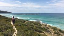 Murramarang 3-Day Great Coastal Walk from Batemans Bay Including Accommodation and Meals, Batemans ...