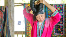 Small-Group Day Tour to Longji Rice Terraces and Ethnic Minority Villages from Guilin, Guilin, Day...