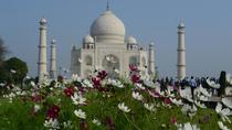 Delhi Agra and Taj Mahal Private Day Trip by Express Train with Lunch, New Delhi, Day Trips