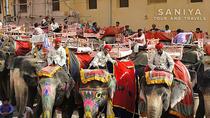 Jaipur City Tour of Amber Fort Sunrise To Sunset, Jaipur, Day Trips