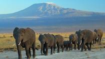 3 Day Kenya Safari, Nairobi, Multi-day Tours
