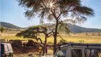 5 Day Tanzania Safari, Arusha, Multi-day Tours