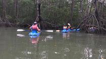 Kayak in the mangrove manuela Antonio, Quepos, Kayaking & Canoeing