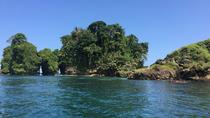 Speed Boat tour to Mangrove Point -Starfish Beach -Bocas del Drago and Birds Island, Bocas del...