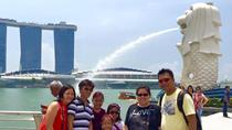 Best of Singapore City Tour, Singapore, Night Tours