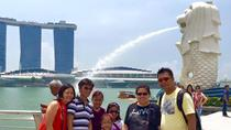 Best of Singapore Full-Day Tour, Singapore, Bike Rentals