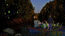 Fireflies Night Tour from Singapore, Singapore, Nature & Wildlife