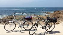 Porto Bike Rental, Porto, Bike & Mountain Bike Tours