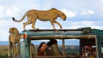 Masai Mara Camping Safari, Nairobi, Multi-day Tours