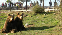 Wolf and bear trail, Zadar, Hiking & Camping